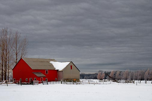 Snowy Farm 20100126