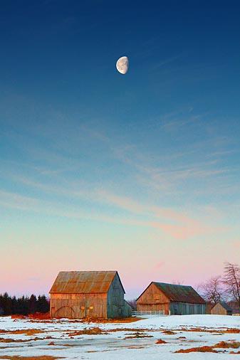 Sunrise Moon Over Two Barns 14505
