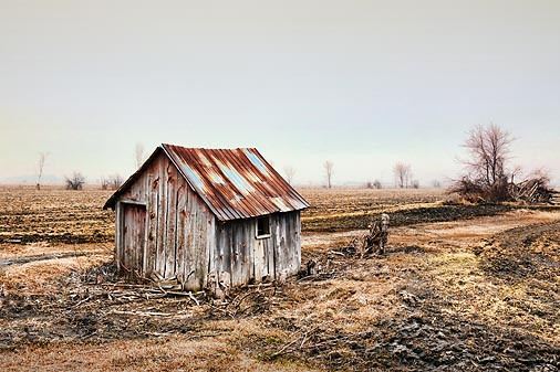 Field Shed 20100322