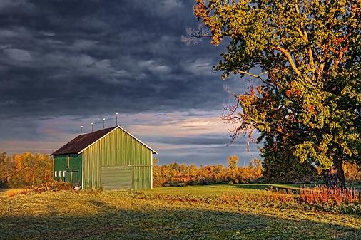 Green Barn At Sunrise 22753