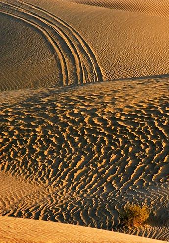 Imperial Sand Dunes 26565