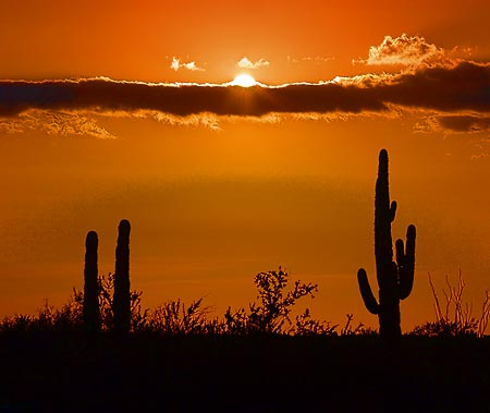 Desert Red Sky