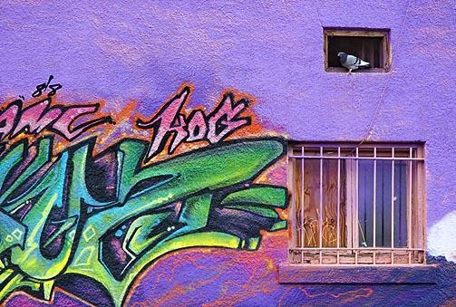 Graffiti Admirer 30268