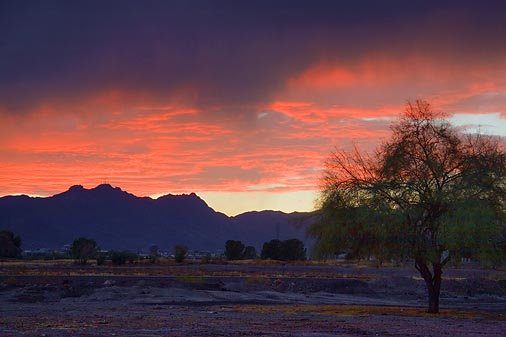 Arizona Sunset Rain 30308