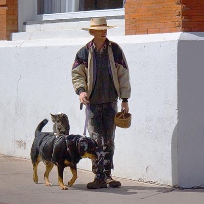 Doggieback Rider 30884