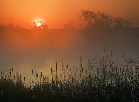 Kingston Sunrise 20060504