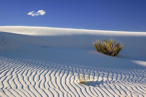 White Sands 32024