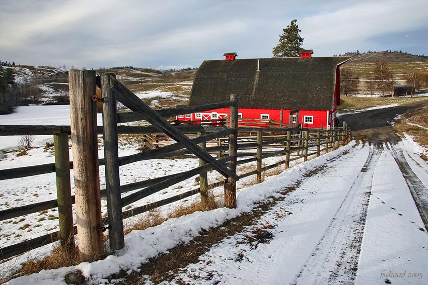 Red Barn II