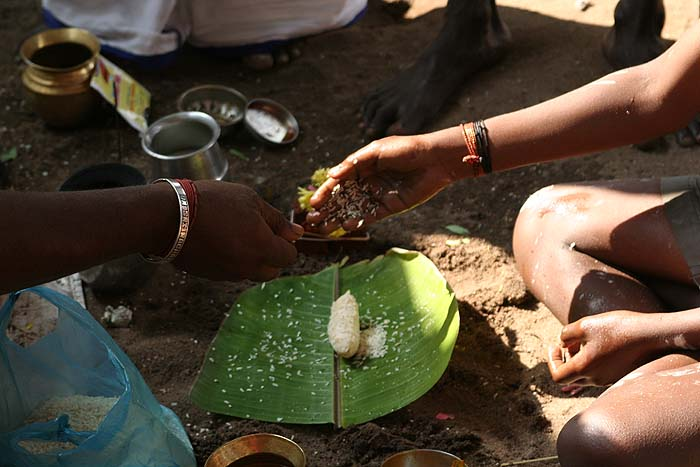 Ritual for the anniversary of a father´s death in Srirangam, Tamil Nadu.