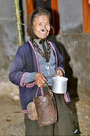 Apatani village Hari