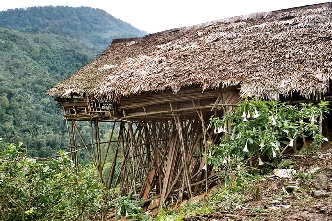 Tagin house on stilts