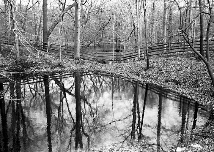 T. R.s Pond