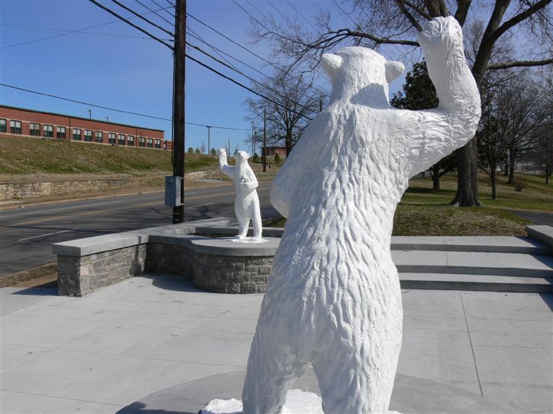 Dueling Polar Bears