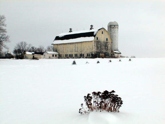 winter in the heart of New Yorks Amish Country. . .