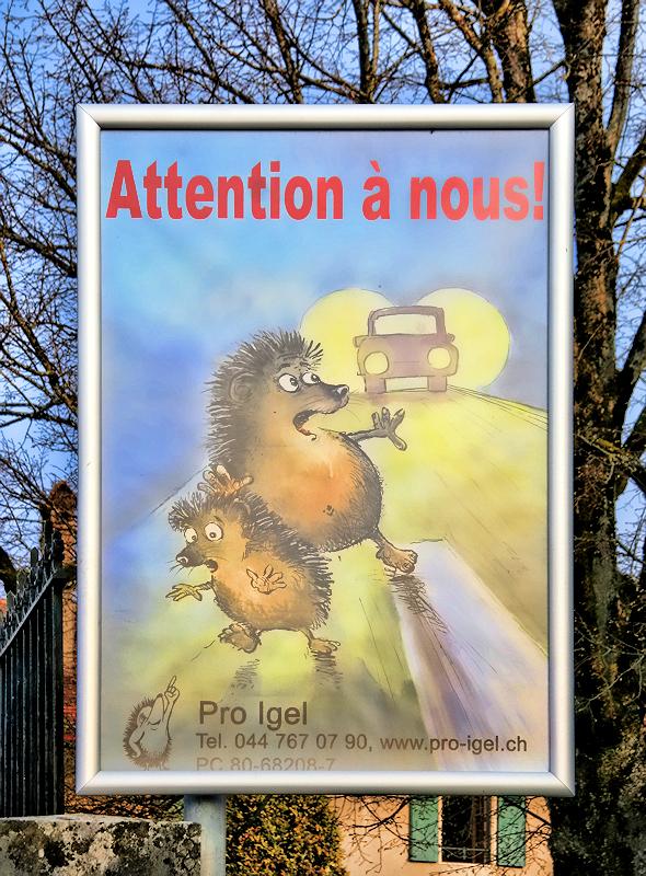 Duillier is a hedgehog-friendly village....