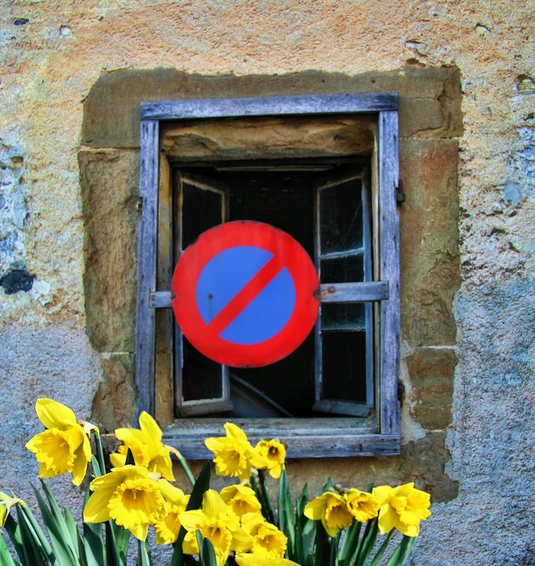 No parking on this windowsill!