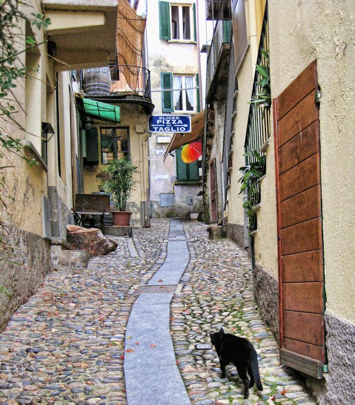 Do Italian cats like pizza for breakfast?