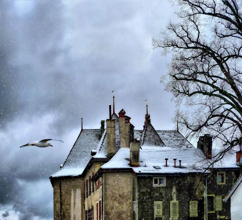 Winter flies silent over roof tops...