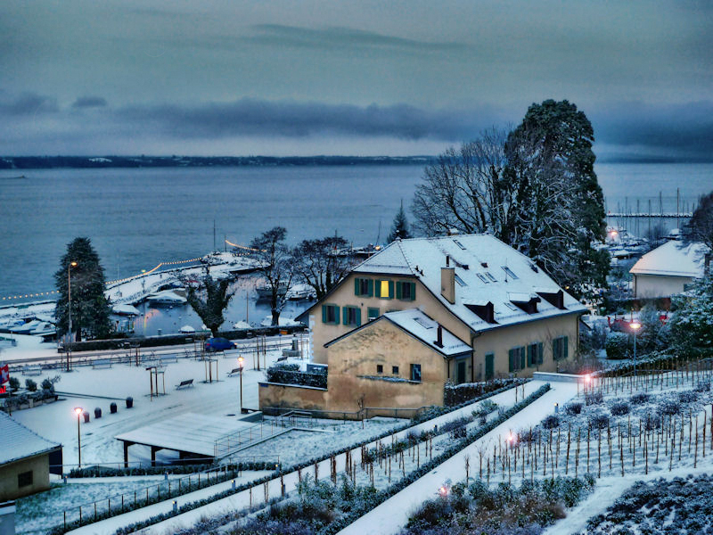 Winter awakening...