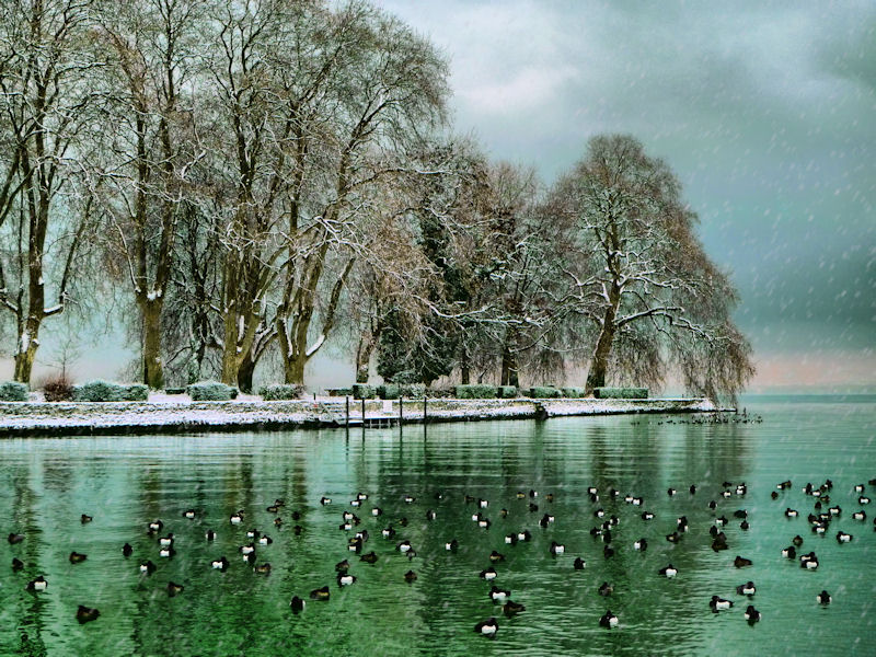 The pensive winter mood of a small island....