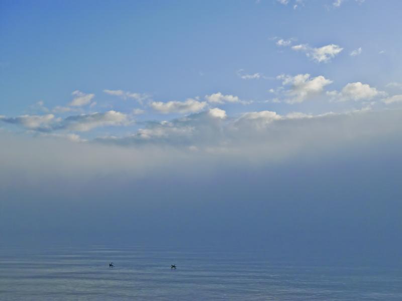 Low mist....