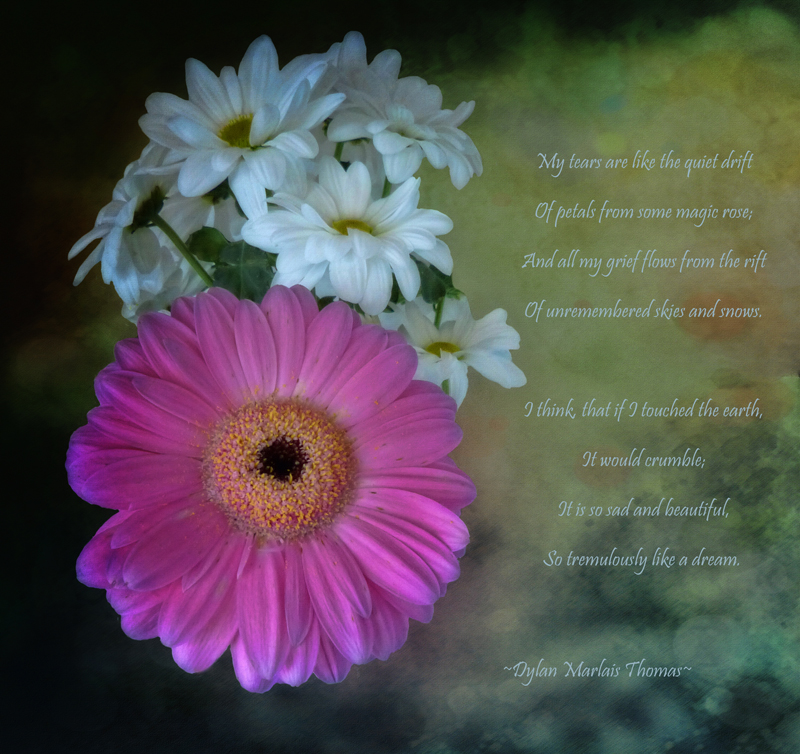 The flowers which loved poetry...