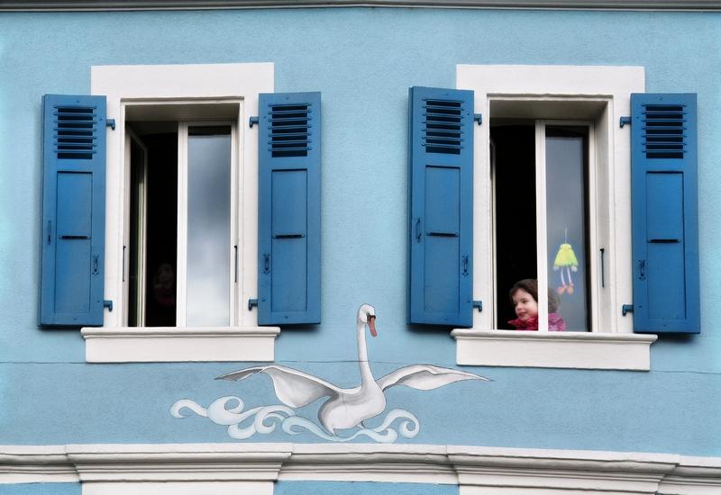 The Guardian Swan
