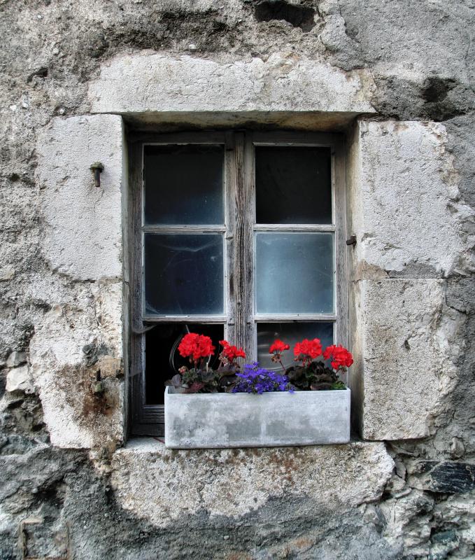 Inner secrets hidden by flowers