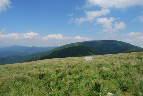 Round Bald, Carvers Gap