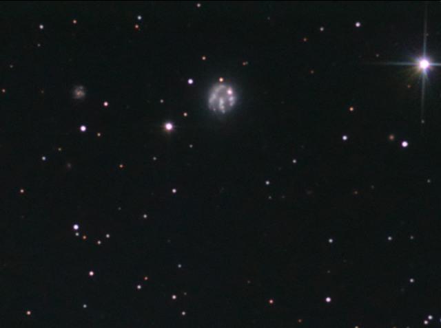 NGC 2537 (Arp 6)