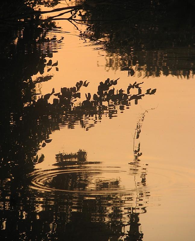 Chantilly, reflet cuivré sur lOise