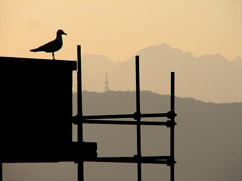 Porto Venere, the watcher in the sky