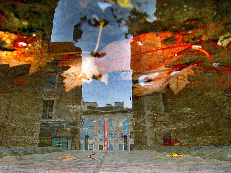 Place royale et feuilles dautomne
