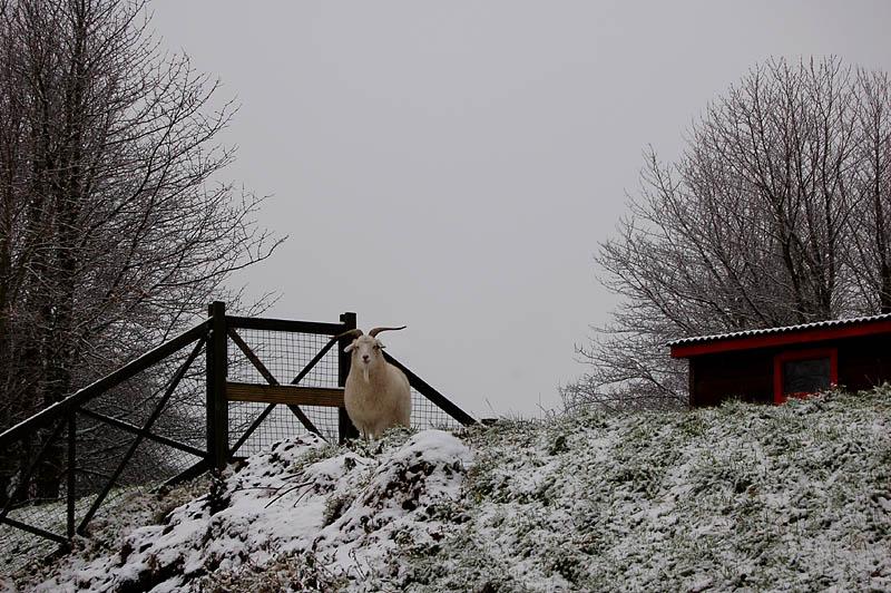 30th December 2005 woolly jumper