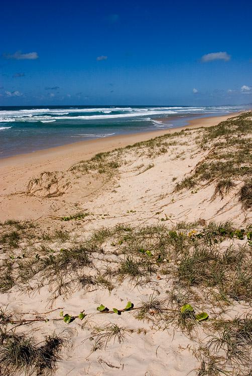 Castaways Beach