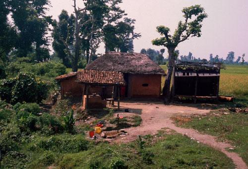 House on the Terai