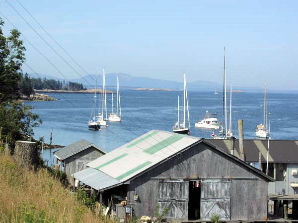 Lunts Harbor - Frenchboro Island