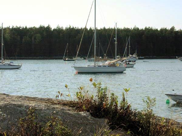 Sebasco Harbor