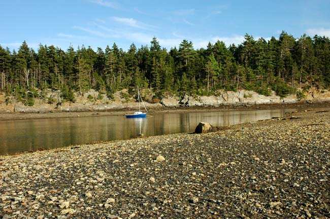 The Shallow End of Jewell Island Cove