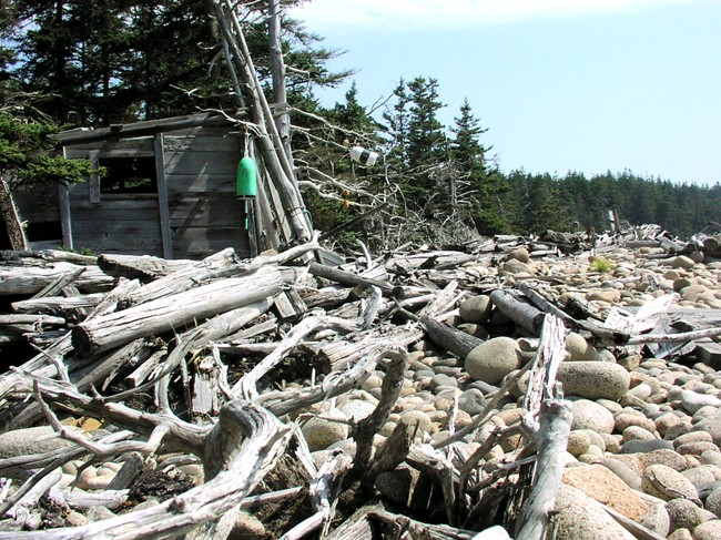 The Driftwood Shack