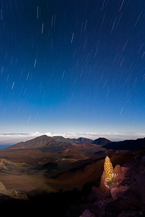 Haleakala - Reaching for the Stars