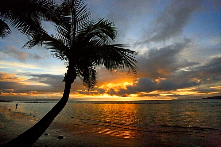 Kihei - Lone Palm