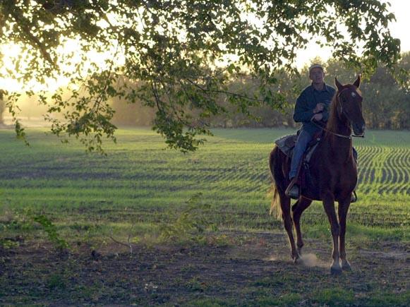 Horseman at Sunset