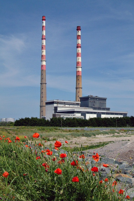 The Pigeon House power station