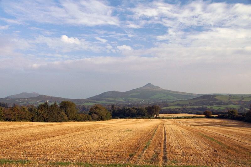 Sugarloaf, from near Enniskerry