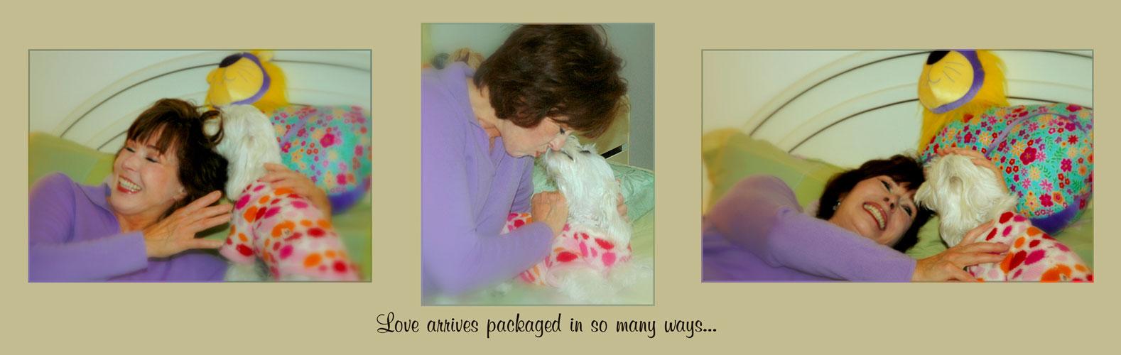 Love arives...