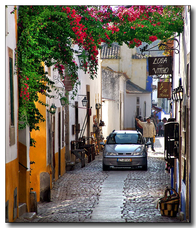 Flowered Street