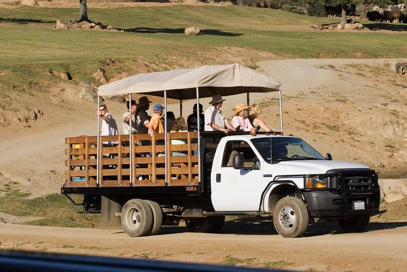 Caravan Truck