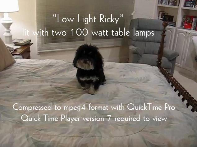 Low Light Ricky