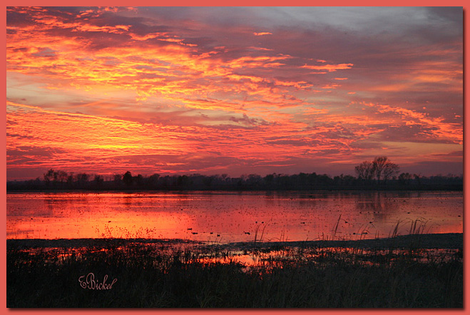 a Fall sunset on the Marsh